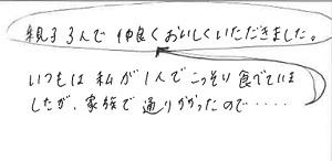 419A-2(300p)