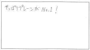 68-1(300pic)