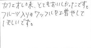 68-5(300pic)